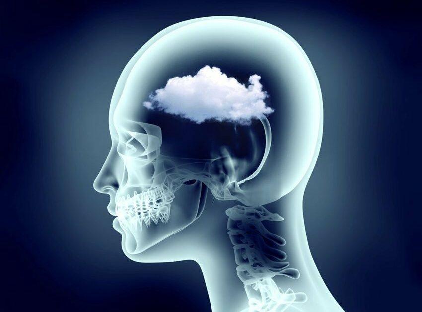 pierdere de grăsime ceață creier